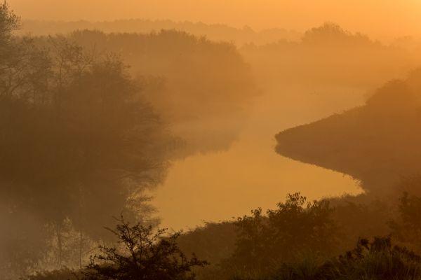 amsterdamse-waterleidingduinen-dunes-of-the-amsterdam-waterreserve-1-20141220-1170643360290A096F-906B-3803-4264-2937403CE33D.jpg