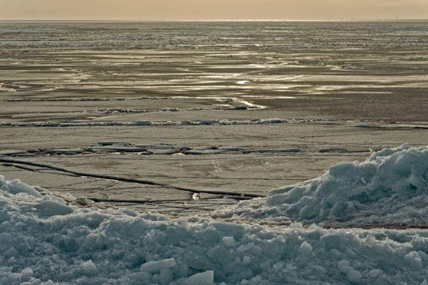 kruiend-ijs-drifting-ice-1-20141220-1107810278CB7FD6D6-5608-A4E1-0FEF-357A6C02886C.jpg