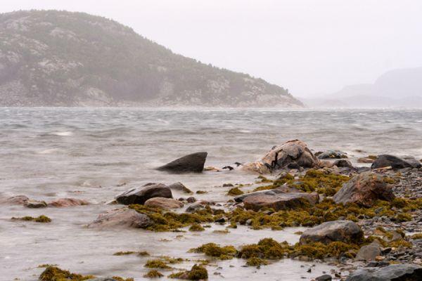 fjorden-kust-fjord-coast-3-20141219-1506518762CE62D665-D0BA-5F26-5F11-ED66D110A8A5.jpg