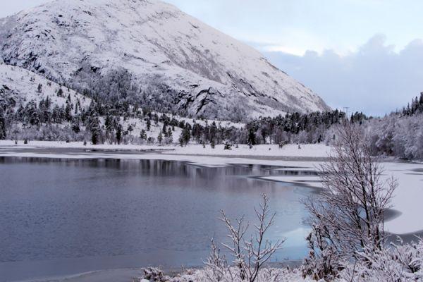 fjorden-kust-fjord-coast-4-20141219-159460046424709727-01CC-628F-1478-0A56228AEA82.jpg