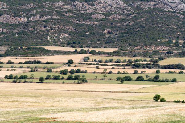lijnenspel-in-spaans-landschap-spanish-pyrenean-landscape-8-20141219-105726482885C84B9B-EB92-9113-7A4C-D8AD5281EDA5.jpg