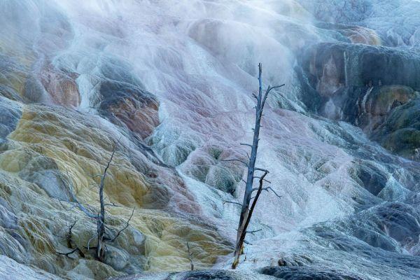 living-color-mammoth-hot-spring-md2B4897CE-0C58-DC54-9851-4B1B0B83976E.jpg