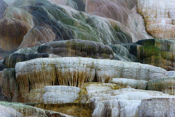 mammoth-hot-spring-palette-springA2A9491A-097E-DB18-5137-399314E4CC3C.jpg