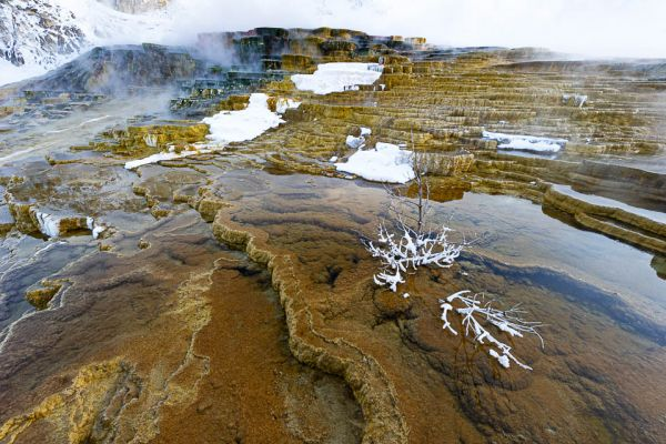 mound-terrace7FA2D59D-AEF2-D357-75D6-17AF7EA64CFB.jpg