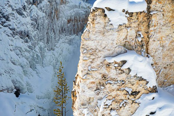 yellowstone-canyon-upper-falls-md99287B4E-27D2-4B28-03C8-C8BE3CBD58D1.jpg