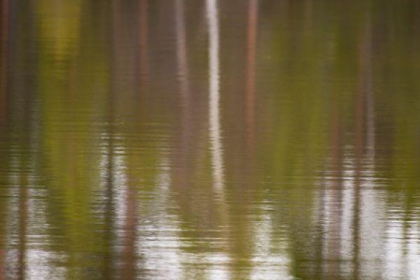 spiegelbeeld-reflection-reflexion-20160501-150985989300E8DDD9-877D-110D-D238-E656C3E1EA0B.jpg