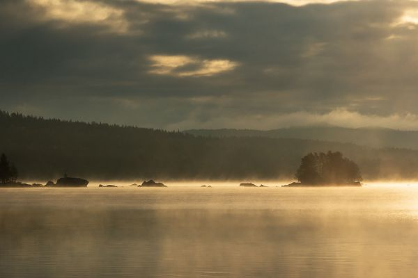 ochtend-mist-morning-fog-morgen-nebel-20171015-1879648022A17814F7-6955-1DF1-5665-AE13D21D7FEC.jpg
