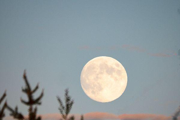 in-de-volle-maan-into-the-moon-im-der-mond-2-20180625-156819346380D4FFAD-3AF5-24C6-D1EE-9DE11C842CD7.jpg