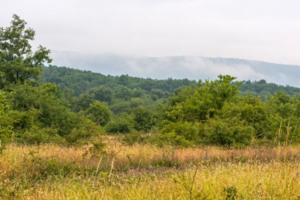 buekk-gebergte-buekk-mountains-20141218-113810733959D4A421-0077-8CD2-90AE-7436E6D3EDA8.jpg