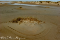 Waddenkust bij eb-Wadden sea at low tide-Wattenmeer mit Ebbe-Nikon D3S-70-200mmF2,8-1:50sec - F8 iso100