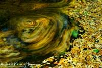 Leuvenumse beek-Stream-Bach-Nikon D3S-70-200 F2,8-56sec F8 ISO200