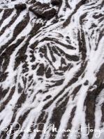 touwlava_met_sneeuw_floodbasalt_with_snow_20141219_1414572003