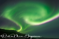 noorderlicht_-_northern_lights_-_nordlicht_-_aurora_borealis__20161009_1301705516