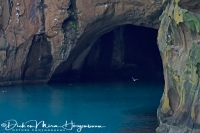 vestmannaeyjar_of_westmaneilanden_-_westman_islands_cave_-_westmaennerinseln_20170625_1582939000