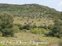 landschap_lesbos_-_landscape_lesvos_20150527_1738040900