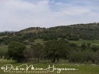 landschap_-_landscape__20150527_1361398221