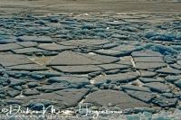 kruiend_ijs_drifting_ice_2_20141220_1087228968