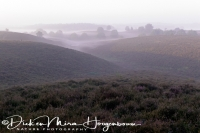 de_posbank_op_de_veluwe_the_posbank_national_park_1_20141220_1005424004