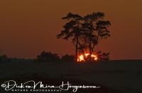 zonsondergang_op_de_veluwe_sundown_on_the_veluwe_national_park_20141220_1698878883
