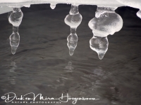 ijs_en_details_ice_and_details_9_20141219_1798841268