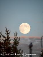 in_de_volle_maan-into_the_moon-_im_der_mond_2_20180625_1568193463
