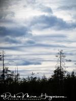 wolken-clouds_1_20180625_1080920423